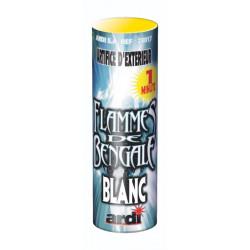 (F2) BENGALE BLANC 1MN